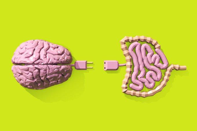 Como o equilíbrio intestinal pode ajudar no seu equilíbrio psicológico